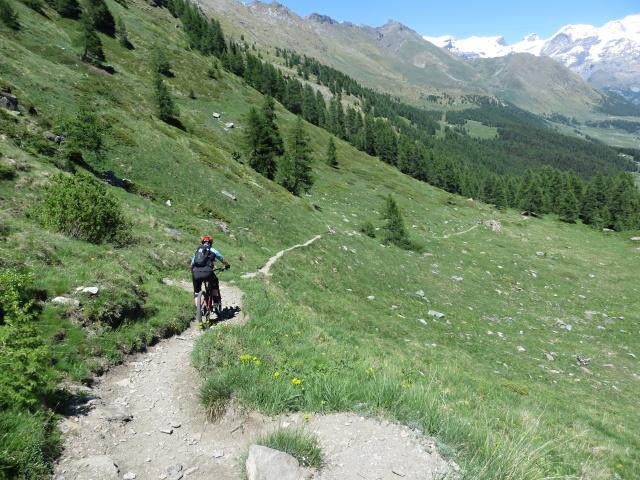 Parte scorrevole del sentiero che scende dal Col Portola per il Pian delle Dame
