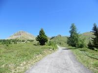 Salita al Col Portola - nei pressi dell'Alpe Champ Cellier