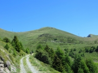 Salita al Col Portola - in vista dei ripidi traversi finali