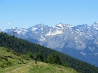 Salita al Col Portola - panorama
