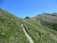 Sentiero per il Col Portola