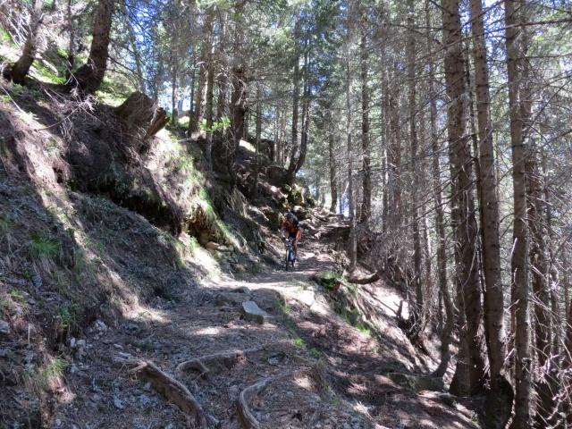 Tratto di sentiero che collega la Colma di Craveggia con La Piana di Vigezzo