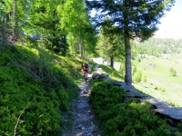 Il sentiero finale che conduce all'Alpe della Colma di Craveggia