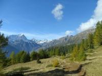 Tra l'Alpe Marsasca e l'Alpe Coatè, sullo sfondo, da sinistra, il Monte Leone, la Punta Terrarossa e la Punta d'Aurona