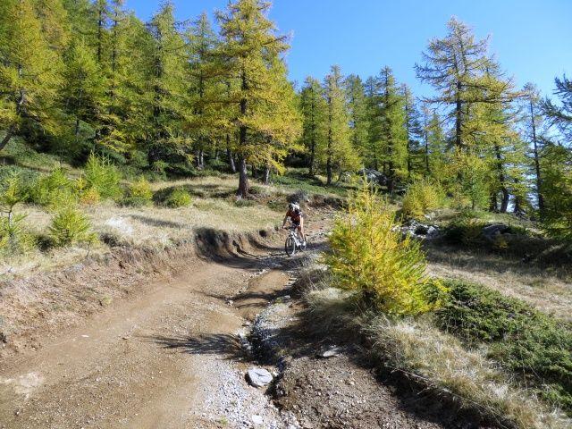 In direzione dell'Alpe Coatè