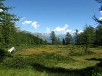 Alpe di Ruino