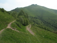 Dorsale lariana - monte Bolettone nei pressi della Bocchetta di Molina