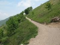 Sterrato sulle pendici del monte Palanzone in direzione del rifugio Riella
