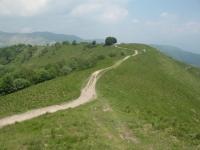 Sterrato nei pressi del monte Croce