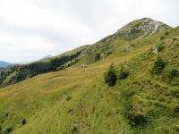 Alpe Casera di Aralalta