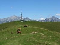 La sommità del Monte Ponciv (antenna) dalla Bocchetta di Terrabiotta, sullo sfondo le Grigne