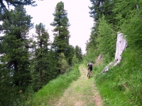 Lungo la forestale che collega Unners Sänntum con Gibidum