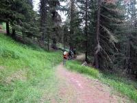 Il sentiero che scende ad Unterbäch