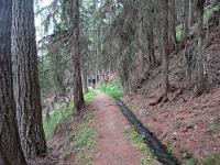 Tratto di sentiero che scendendo verso ad Unterbäch costeggia una Bisse