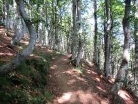 Bel tratto ciclabile di sentiero tra la Capanna Pairolo e la bocchetta di S. Bernardo