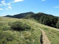 Il sentiero che si sviluppa lungo il crinale per il Passo di San Lucio