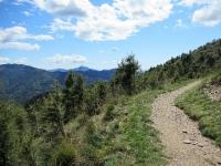 Sentiero che collega l'Alpe Pietrarossa con Piandanazzo