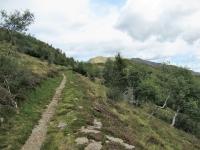 Il sentiero che sale da Piandanazzo verso il Passo sotto il Monte Moncucco