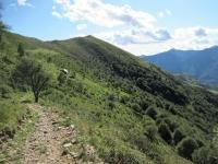 Discesa verso l'Alpe Crocc