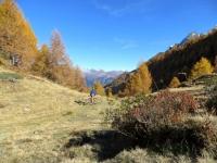 Sentiero presso l'Alpe di Folcra