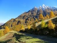 In direzione dell'Alpe Cristallina