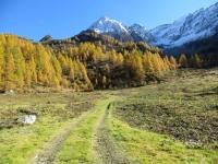 In direzione dell'Alpe Cassina Nuova