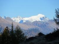 L'adula (rilievo più alto del Ticino - mt 3.402) dall'Alpe Cassina Nuova