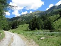 In direzione dell'alpe Champ-Plaisant