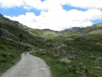 Salita in direzione dell'alpe Tsa de Chavalaray