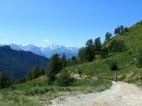Salendo all'alpeggio Tsa de Chavalary - Panorama sulla Grivola (3.969 m)