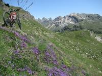 In direzione dell'Alpe Raché