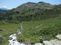 I verdi pascoli sottostanti l'Alpe Raché