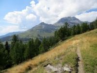 Il sentiero che corre in quota - vista su Petit Mont-Bonvin e Mont Bonvin